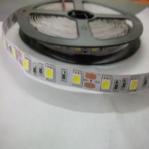 Led dây 5050 - màu trắng - không keo
